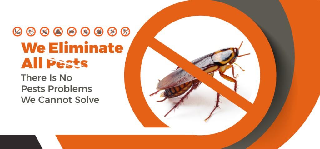pest control in Singapore