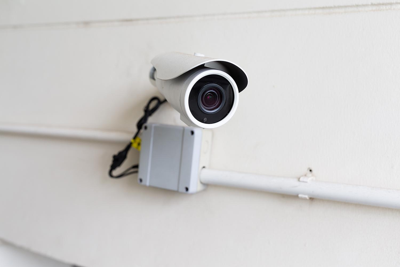 Singapore Pests Control Camera